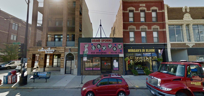 1703-1705 W Chicago Avenue